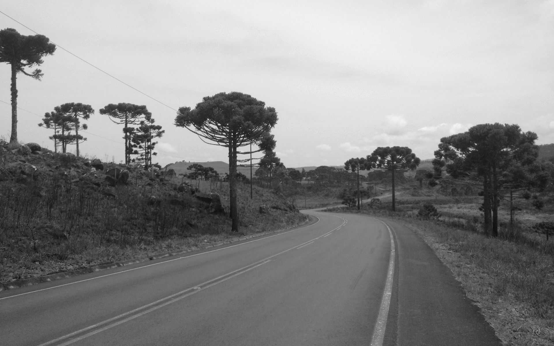 Região Serrana Catarinense